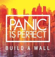 BuildAWallPIP